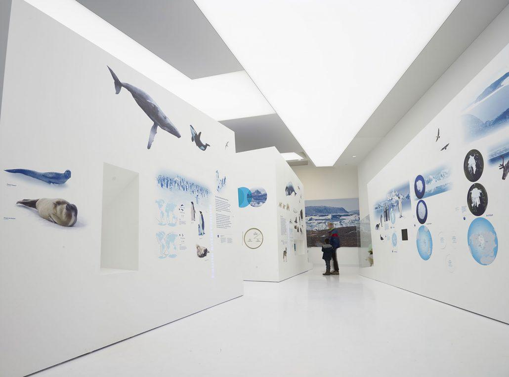 visite musée des mondes polaires