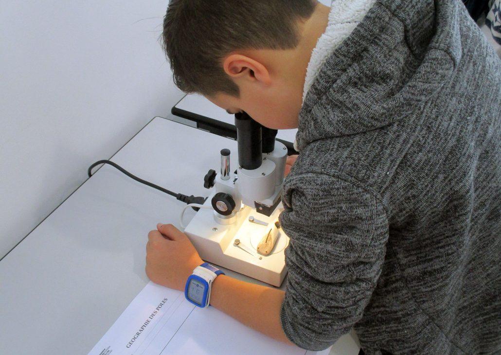 Atelier microscope