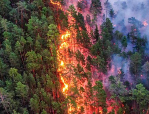 Incendie en Sibérie, c'est reparti !